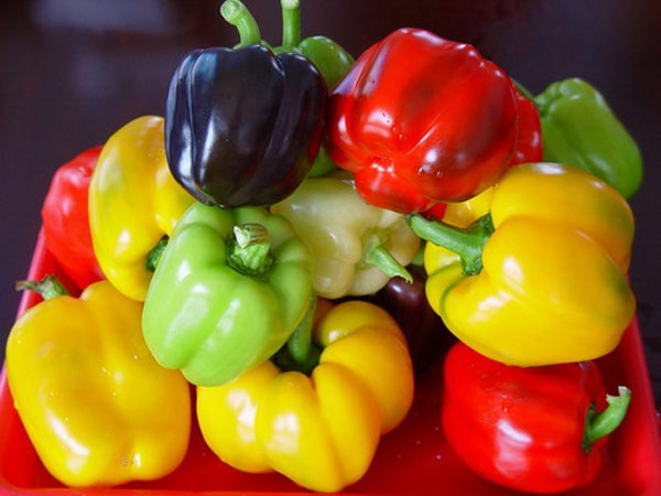 loại ớt chuông ngon và có giá trị dinh dưỡng cao